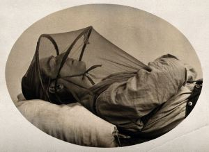 mosquito-net_sleep_wellcome