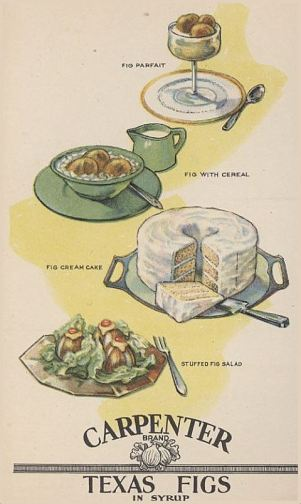 carpenter-texas-figs_illustrations_1929_msu
