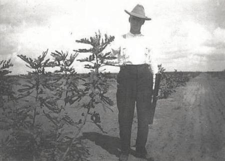 texas-fig-farmer_1911_rppc