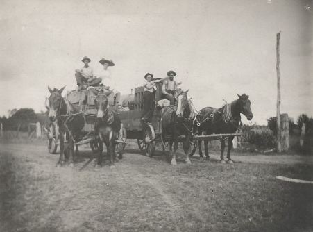 texas-fig-farmers_wagon_rppc_ca1910_ebay