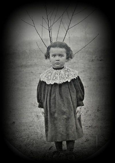 child_possibly-canadian_ebay_tree